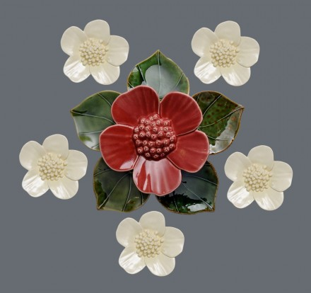 Red ribbonwood flower with soda green heart leaves and white ribbonwood