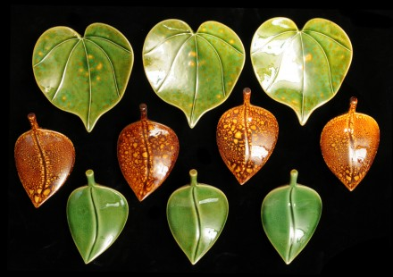 Kawakawa Heart Leaves and Icon Leaves