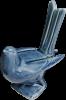 Hihi or Stichbird