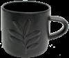 Cup Kauri